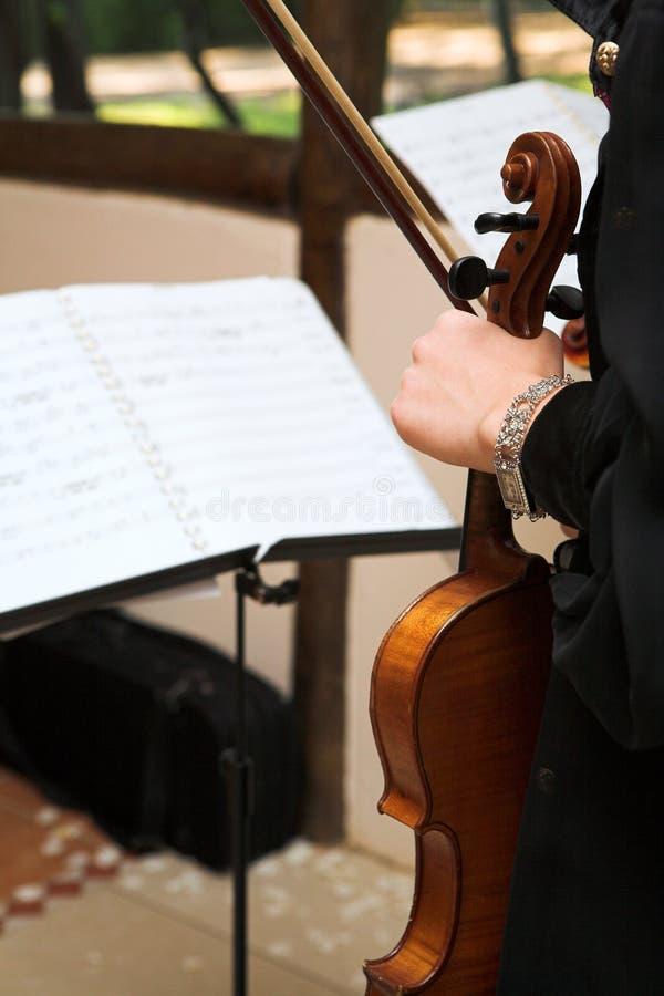 音乐家小提琴 免版税库存照片
