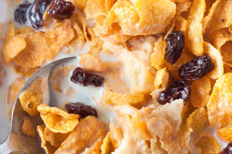 顶上玉米片的早餐 免版税库存照片