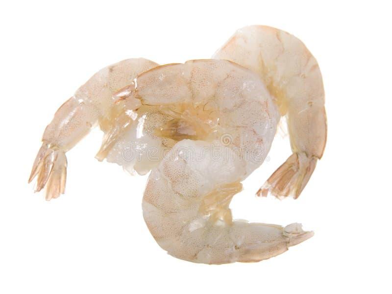 顶头大虾原始的壳 图库摄影