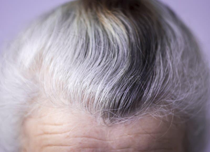 顶头灰发的年长妇女 库存照片
