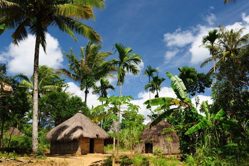 顶头猎人印度尼西亚timor村庄 库存图片