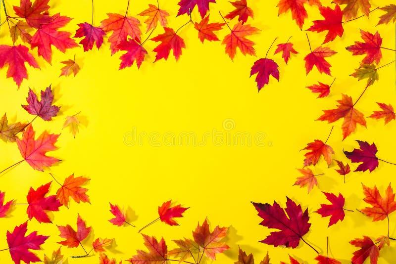 顶视图从下落的红色枫叶的秋天框架在织地不很细明亮的黄色纸 五颜六色的秋天模板由叶子制成 Sele 库存照片