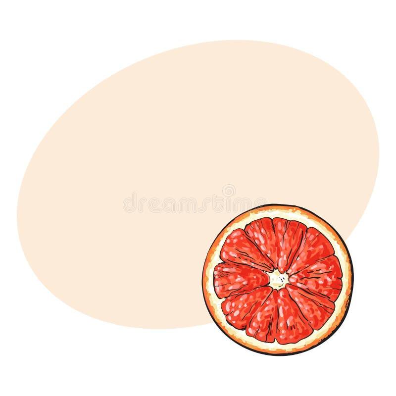 顶视图圆的切片,一半成熟葡萄柚,红色桔子 库存例证