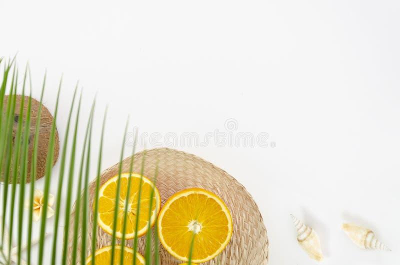 顶视图在棕榈树夏天海滩假期下,椰子、海星和桔子,在白色背景的拷贝空间 免版税库存照片