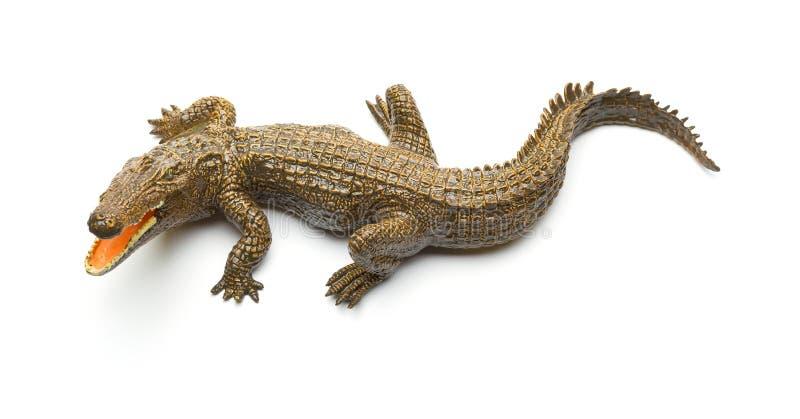 顶视图在白色背景的aligator玩具 免版税库存图片
