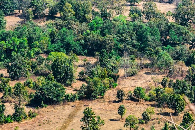顶视图或风景村庄乡下鸟瞰图和绿色领域、乡村绿色树的自然和山backgro 免版税库存图片