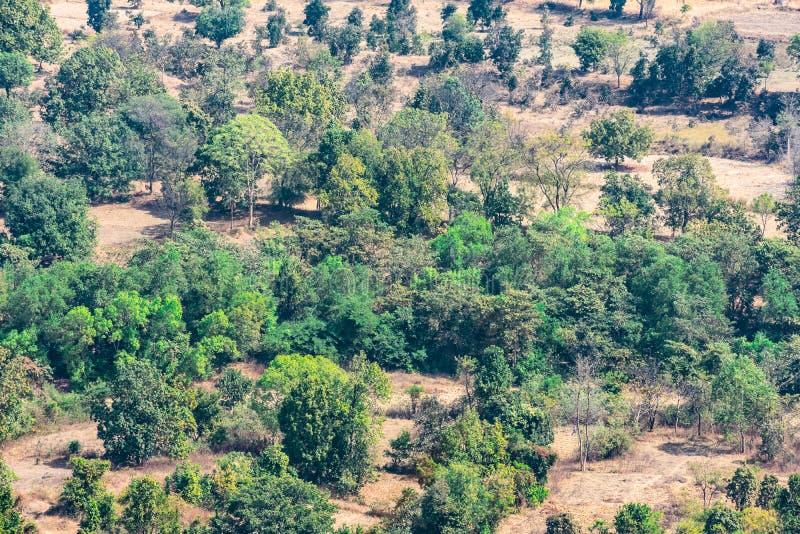 顶视图或风景村庄乡下鸟瞰图和绿色领域、乡村绿色树的自然和山backgro 免版税库存照片