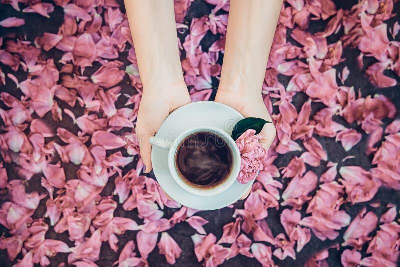 顶视图拿着咖啡和浅粉红色的牡丹花的妇女手在茶碟在黑暗的背景上与瓣 舒适早餐 免版税库存照片