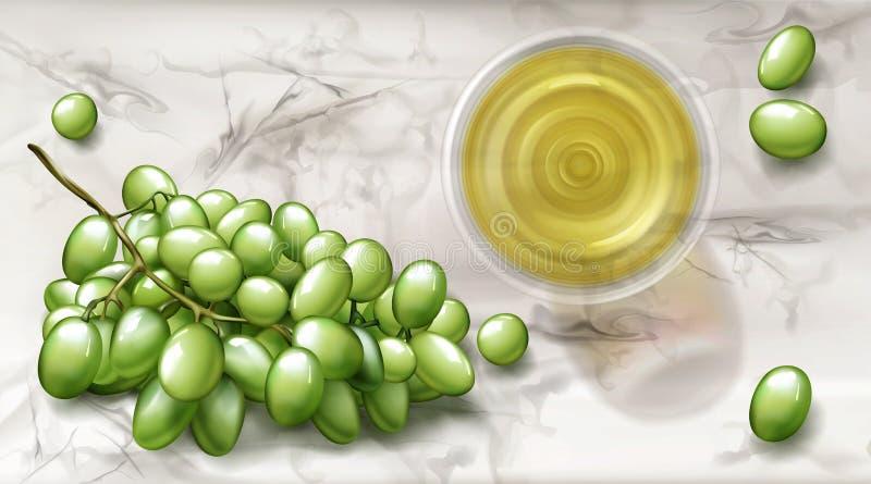 顶视图玻璃,上面有白葡萄酒和葡萄横幅 皇族释放例证