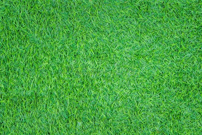 顶视图纹理人为绿草无缝的样式背景 免版税库存图片