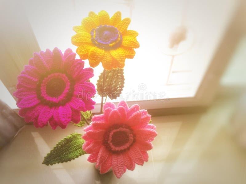 顶视图被弄脏的五颜六色的雏菊花在窗口旁边的花瓶钩编编织物与光线影响 免版税库存图片