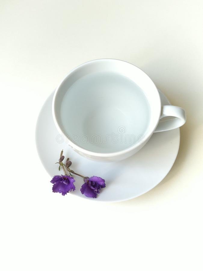 顶视图,平的布局,有紫色响铃的加奶咖啡杯 免版税库存图片