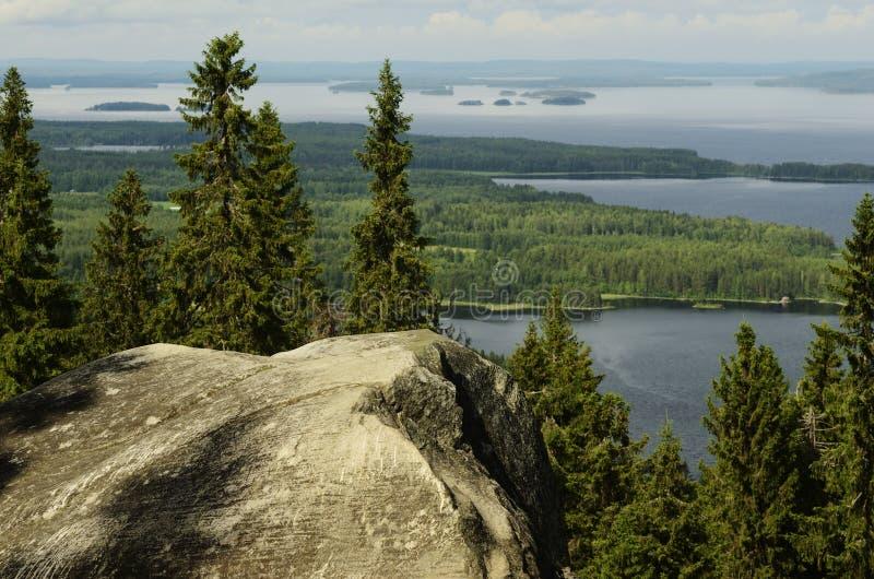顶视图, Koli国家公园,芬兰 免版税库存图片