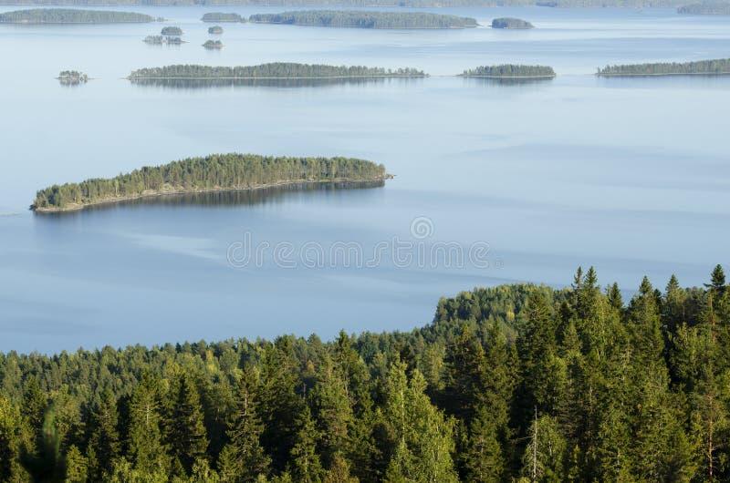 顶视图, Koli国家公园,芬兰 免版税库存照片
