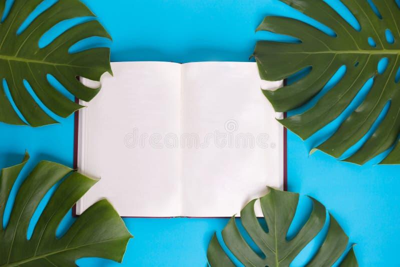 顶视图-与用绿色monstera装饰的空白页的开放书离开在淡色蓝色背景-与拷贝空间 免版税库存照片