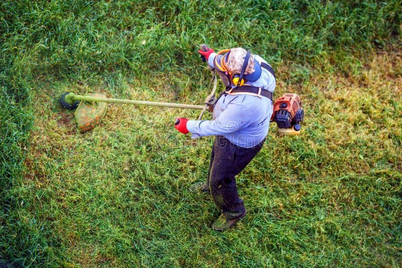 顶视图lawnmover剪与割草机的人工作者干草 库存图片