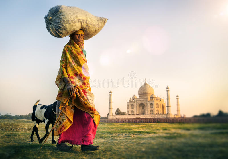 继续顶头山羊泰姬陵概念的印地安妇女 库存照片