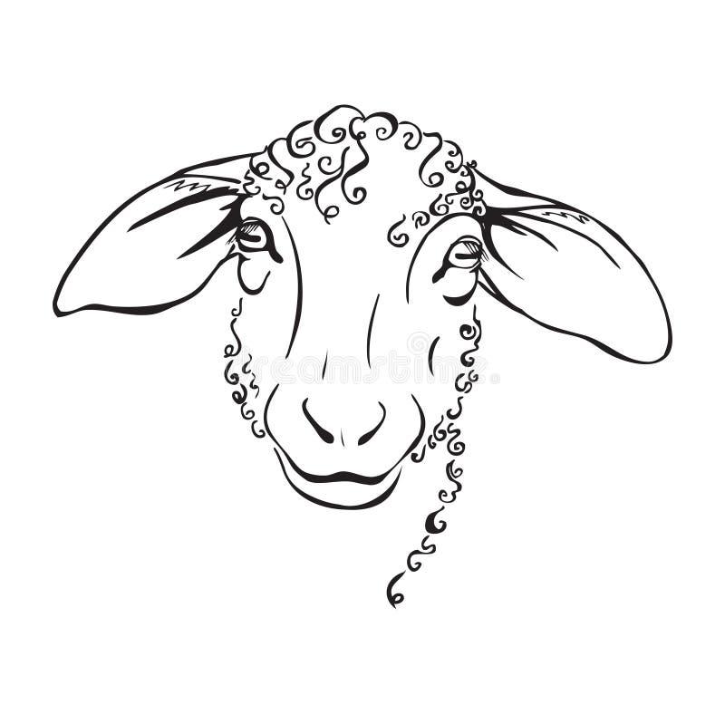 顶头绵羊黑白例证 库存例证