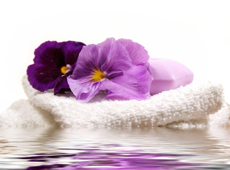 项目紫色温泉 免版税图库摄影