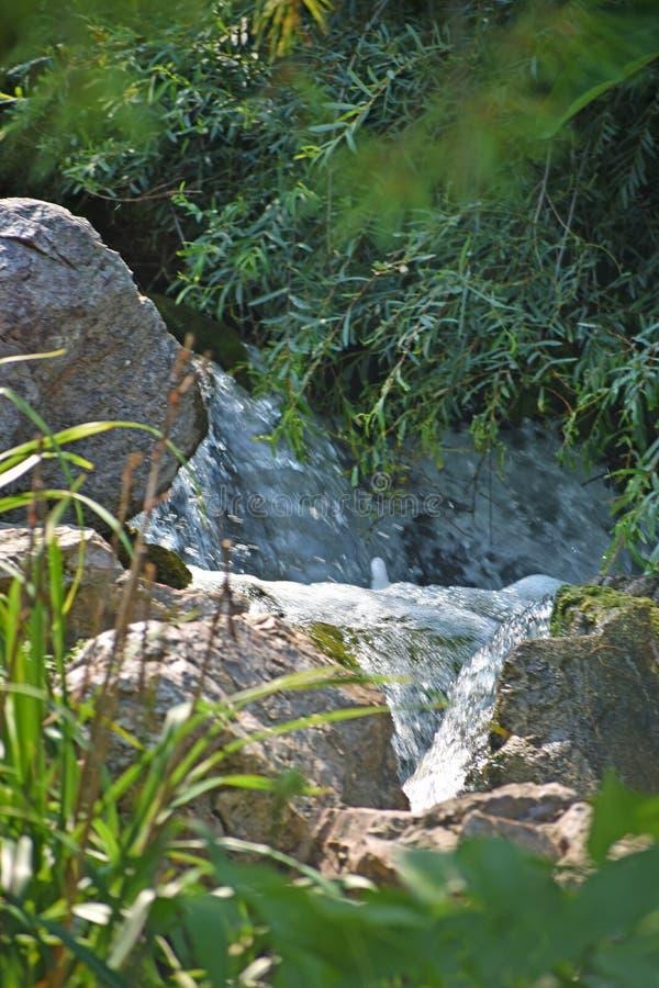 顺流冲从瀑布的水 免版税图库摄影