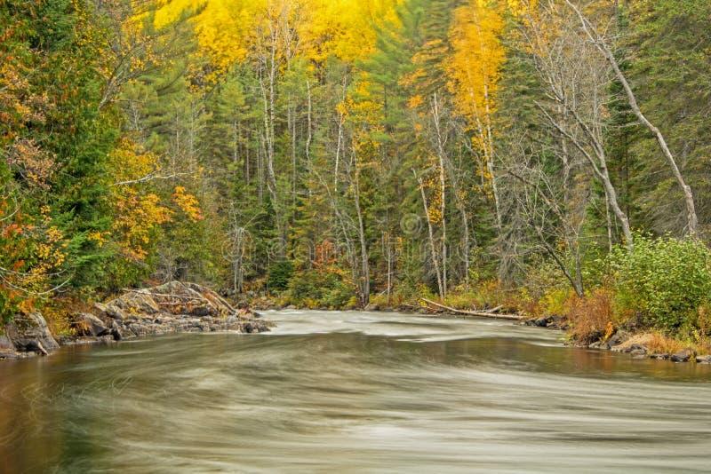 顺流看在约克河在秋天 免版税库存图片