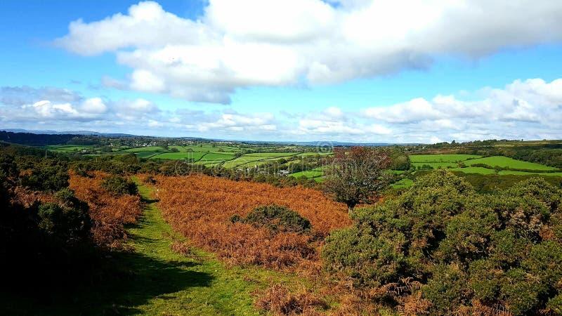 预先朝向下来往shaugh的Dartmoor 德文郡 免版税图库摄影