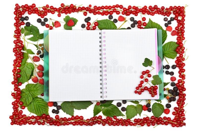 预定在无核小葡萄干莓果、黑莓和粗锉背景  图库摄影