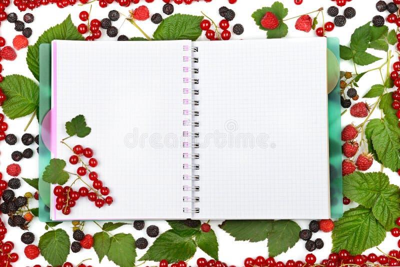 预定在无核小葡萄干莓果、黑莓和粗锉背景  免版税库存图片
