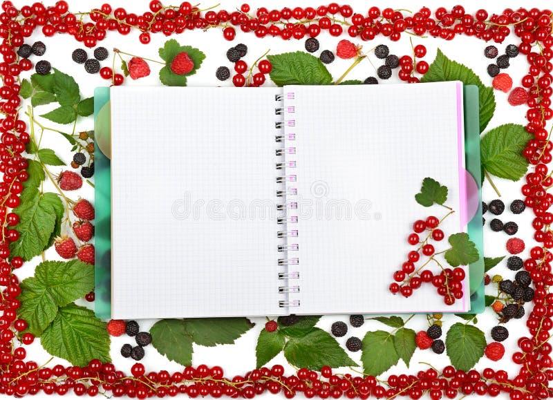 预定在无核小葡萄干莓果、黑莓和粗锉背景  库存照片