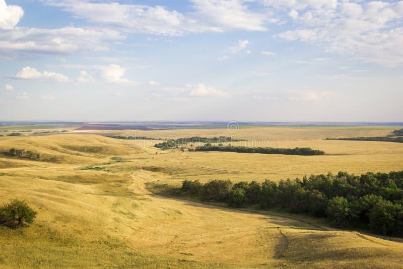 领域、小山和森林夏天风景有被收获的庄稼的,不尽的浩瀚,蓝天与积云,顶视图从 图库摄影