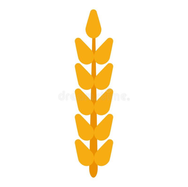 领域五谷耳朵麦子传染媒介 收获农厂面包黑麦农业食物 谷物大麦被隔绝的背景植物 庄稼象金黄c 向量例证