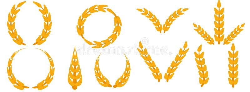 领域五谷集合耳朵麦子传染媒介 收获农厂面包黑麦农业食物 谷物大麦被隔绝的背景植物 庄稼象金子 皇族释放例证