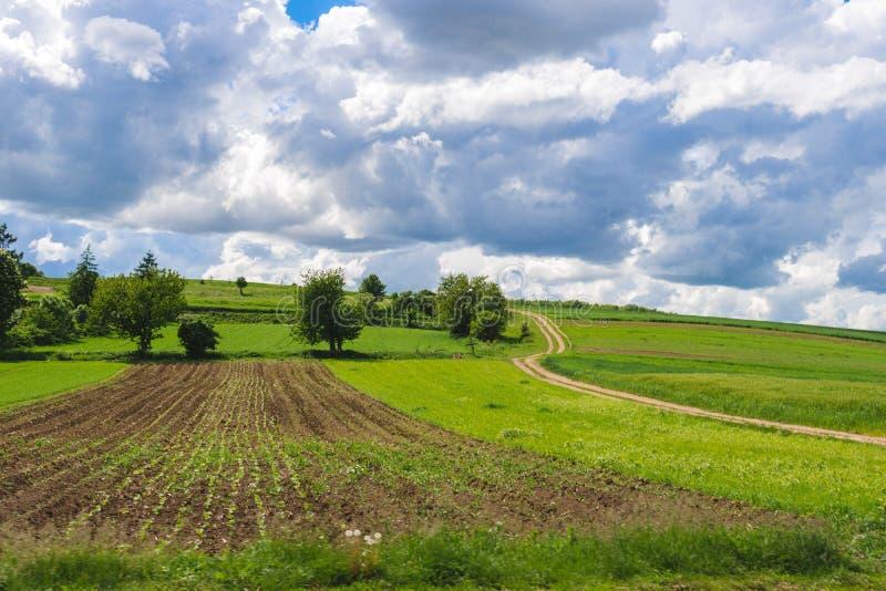 领域和农业小包的看法 种植园,收获,绿色脚跟,土豆 免版税库存图片