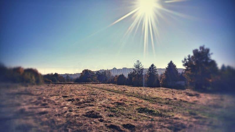 领域和土墩在秋天 免版税库存照片