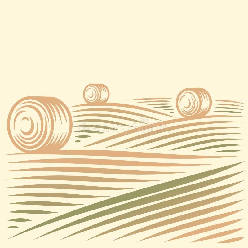 领域和干草堆 免版税库存图片