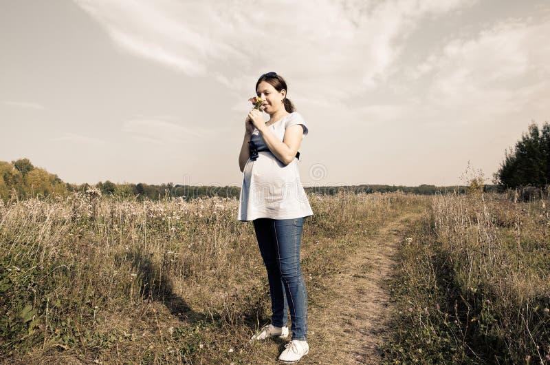 领域的年轻人孕妇嗅在野花的 免版税库存图片