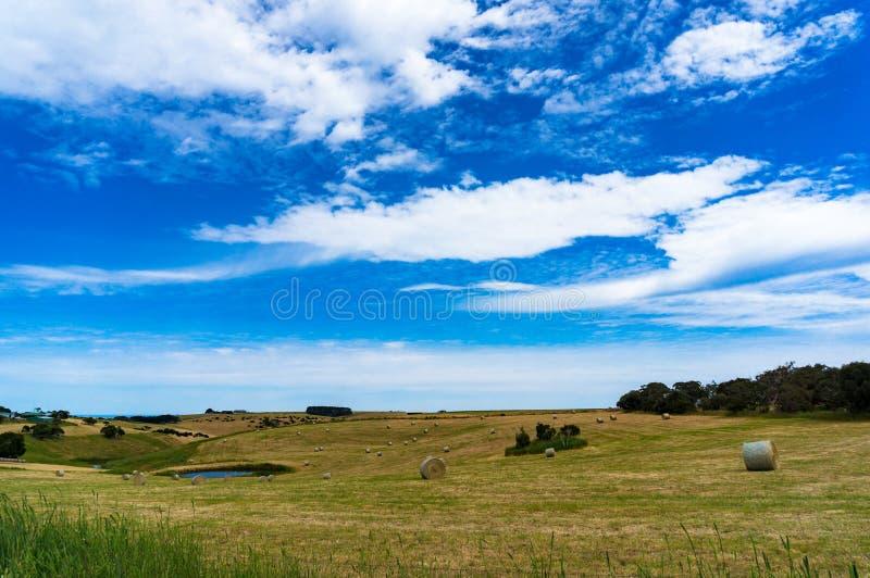 领域美丽如画的农村风景与秸杆大包和池塘的 图库摄影
