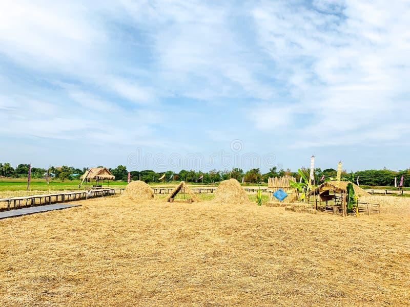领域,乡下,干草堆,自由空间,美丽的天空,自然本底 图库摄影