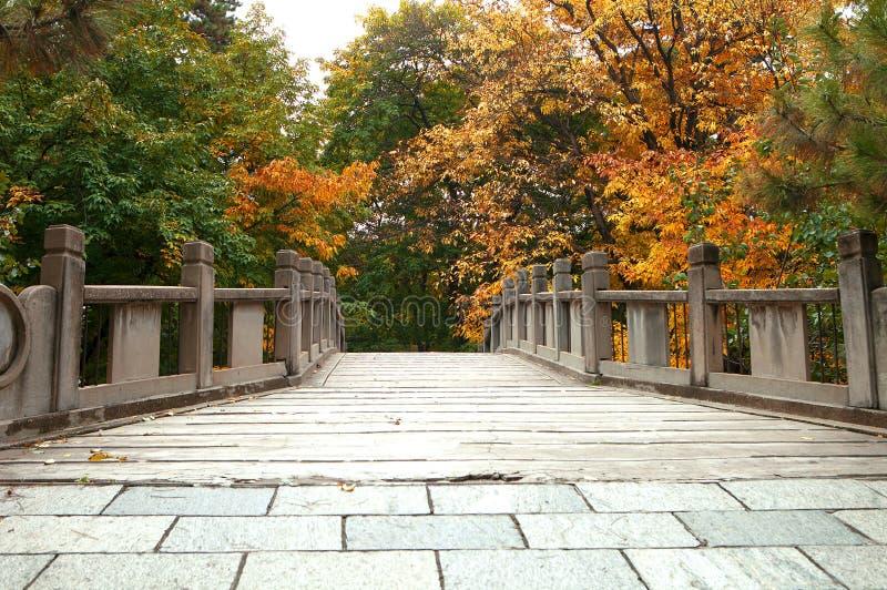 颐和园的秋天 免版税库存照片
