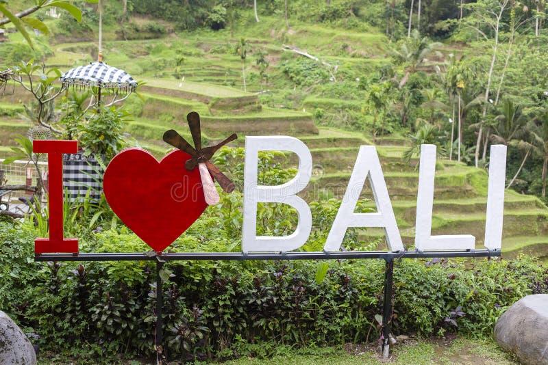 题字我在巴厘岛,印度尼西亚爱Tegallalang米大阳台的巴厘岛  免版税图库摄影