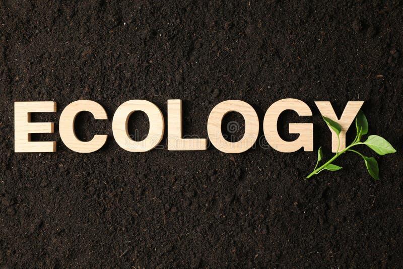 题字生态和绿色新芽在黑土壤背景,空间文本的 库存图片