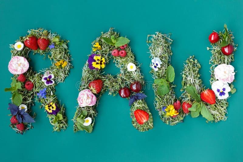 题字的顶视图一未加工从新鲜的microgreens植物不同的花和berrys,在绿色背景 库存图片