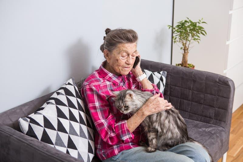 题材老人使用技术 成熟满足的喜悦微笑活跃灰色头发白种人皱痕妇女坐的家 免版税库存图片