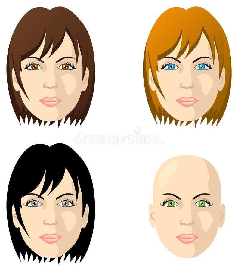 颜色不同的眼睛表面头发s妇女 向量例证