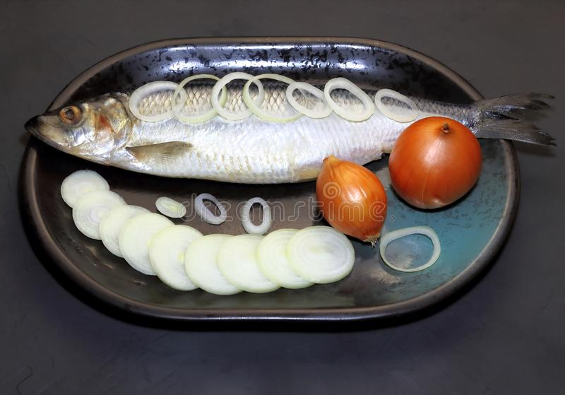 颜色可能exept鱼平均数没什么 盐味的鲱鱼用在盛肉盘的葱 库存照片