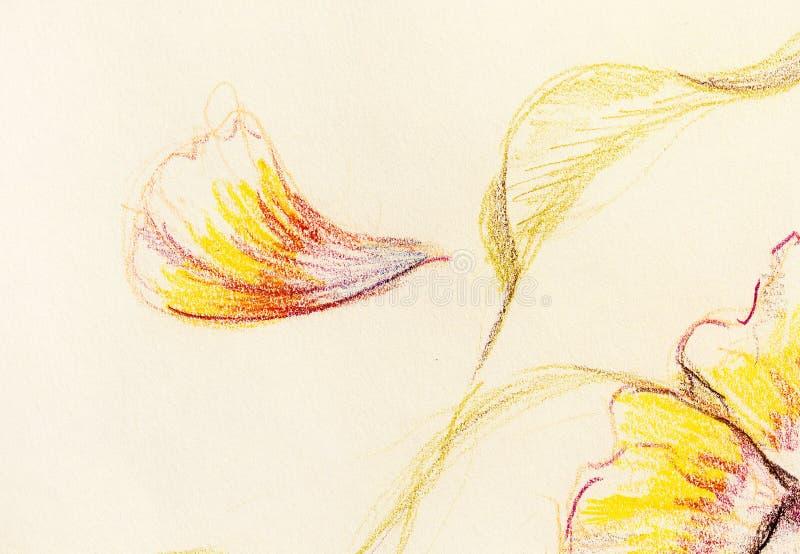 颜色图画花 在纸的原始的手凹道 库存照片