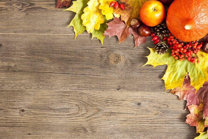 颜色在木背景的秋叶 免版税图库摄影