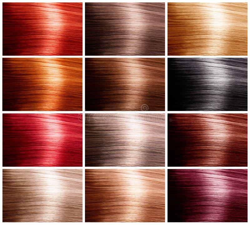 颜色头发集 库存照片