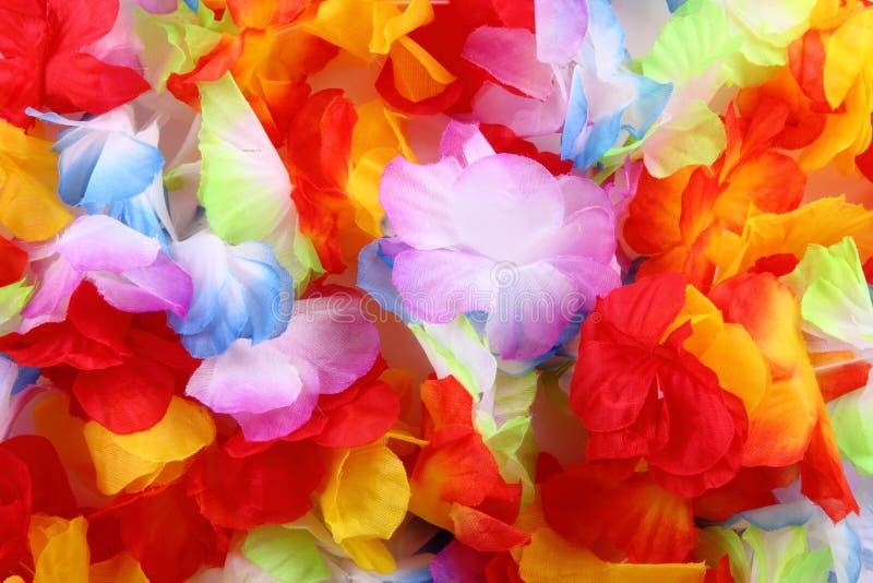 颜色开花纺织品 库存照片