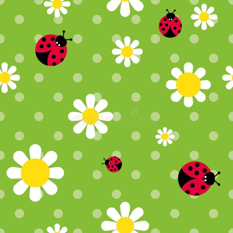 颜色无缝的样式开花雏菊和瓢虫 库存例证